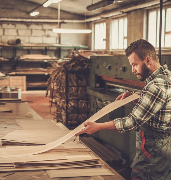 Image Ignifugation du bois